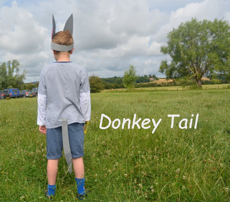 Home made donkey costumes