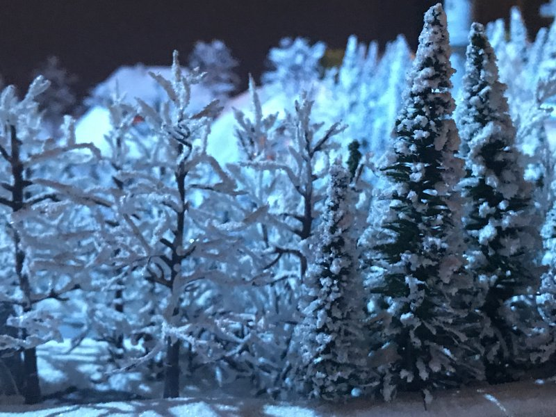 minature snowy trees in black forest
