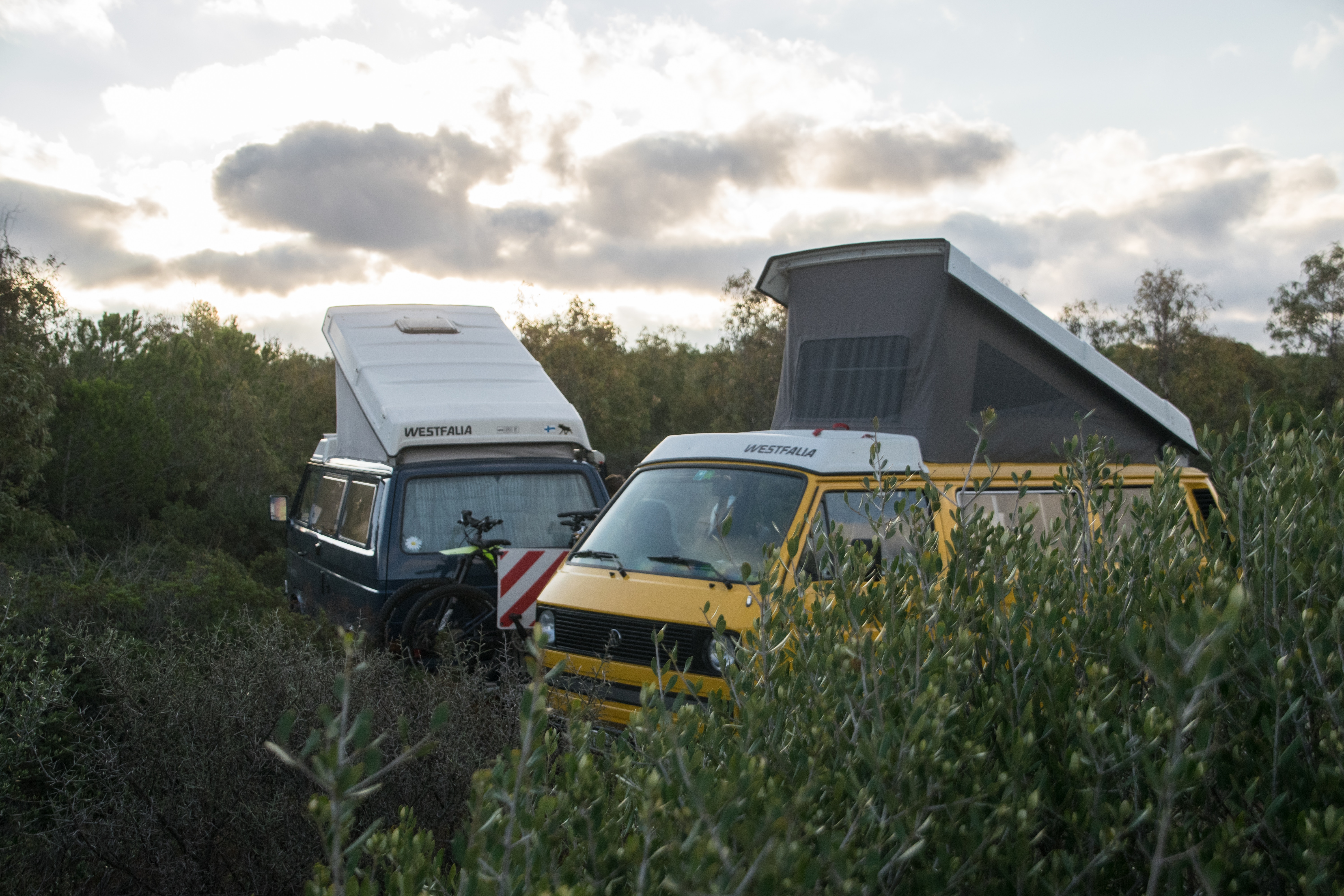 two motorhomes parked in the long grass