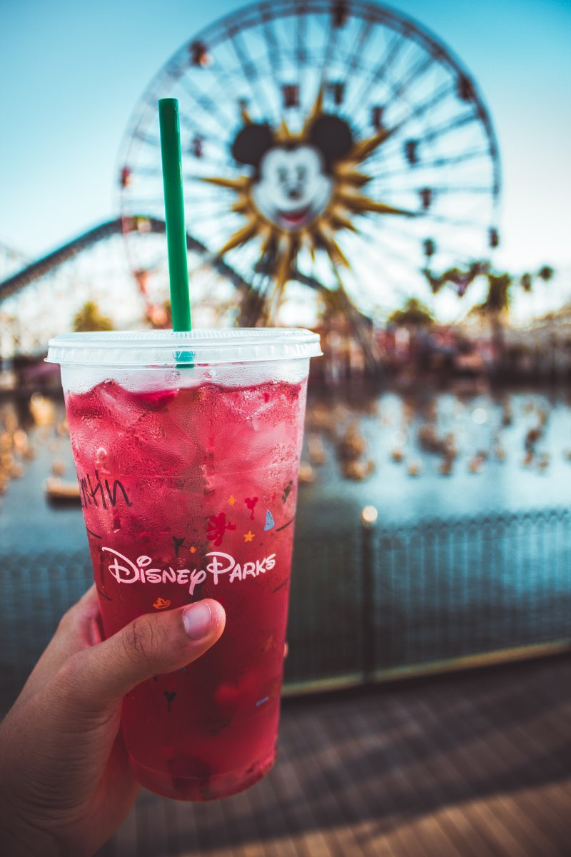 drink at disney park