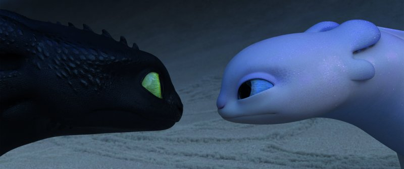 Toothless and Light Fury How to Train your Dragon the Hidden World