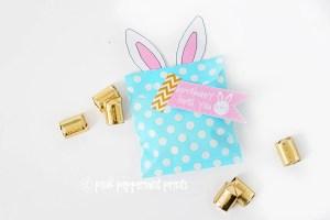 Bunny bag blog