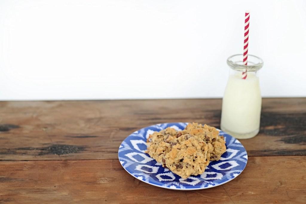 oatmeal chocolate chip coconut walnut cookie recipe header