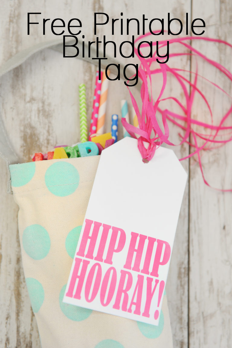 photo regarding Free Printable Birthday Tags called Birthday inside of a Bag : A Lovable Do-it-yourself Birthday reward and Cost-free