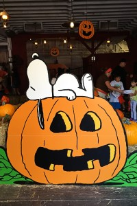 Family Fun for Halloween at Knott's Spooky Farm