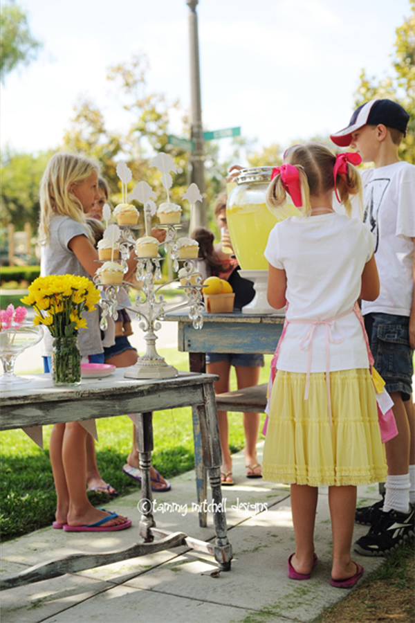 lemonade stand for charity ideas
