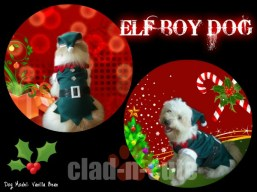 ELF BOY DOG COSTUME