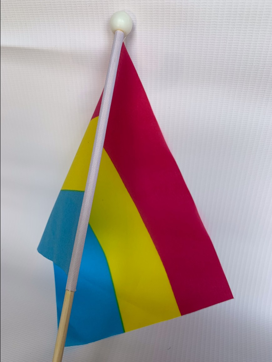 Pansexual Stick Flag
