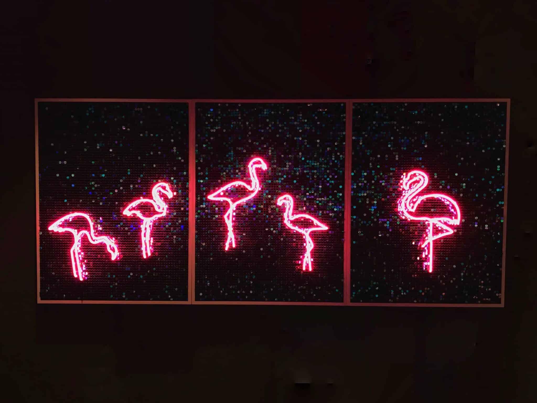 Neon Flamingos