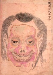 period edo illustrations japan medical anatomical illustration anatomy japanese human kainan drawings circa drawing inside 1798 body cottage pinktentacle outline