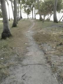 Jalan Tanjung Barat Tidung