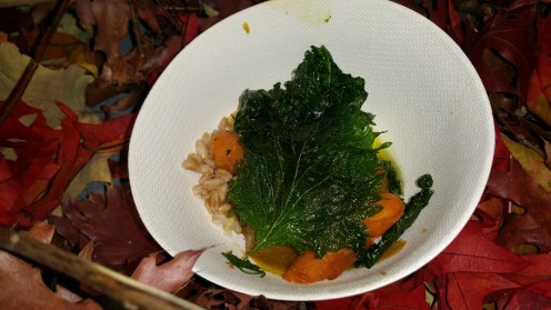 boneless short rib braised carrots mozzarella mustard and fried tuscan kale