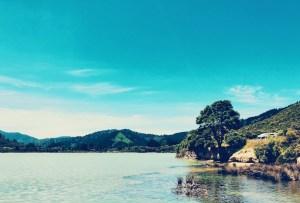 Campingplatz Neuseeland direkt am Wasser, Marlborough Sounds