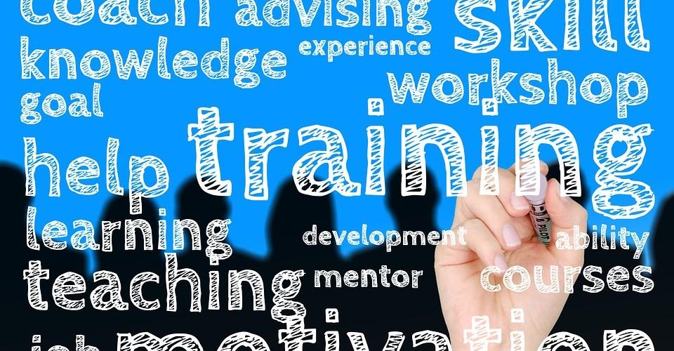 https://pixabay.com/en/education-hand-leave-skills-can-1580143/