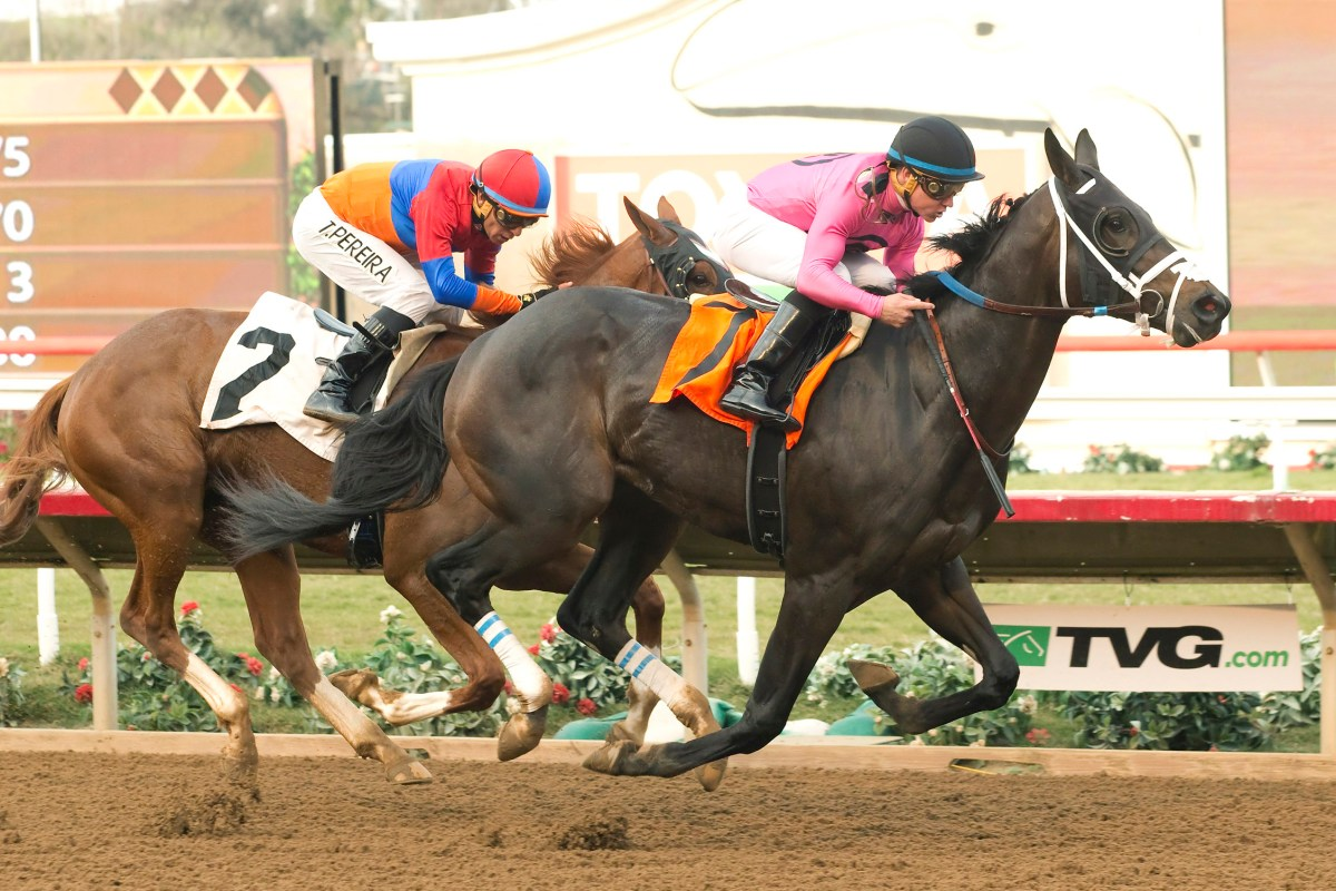 First Crop 2YO DAVKA Takes Maiden at Del Mar