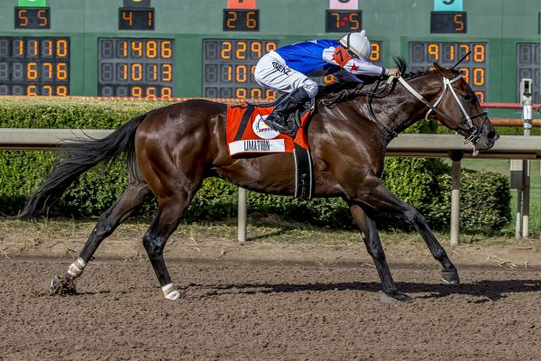 LIMATION Trounces Field in G3 Super Derby