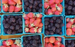 metabolism_food_berries