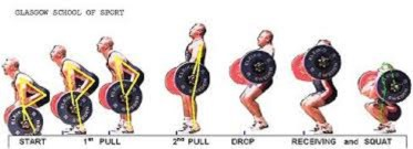 diagram of power cleans steps Photo Credit: www.crossfitpa.com