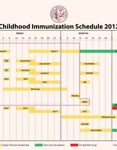 This is the most recent immunization schedule also vaccine upclose pinoykidsmd rh
