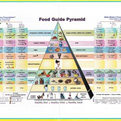 New Food Pyramid Diagram 7 Wirbel Adult Guide Porno Photo