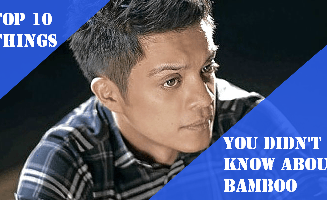 Top 10 Things You Did Not Know About Bamboo