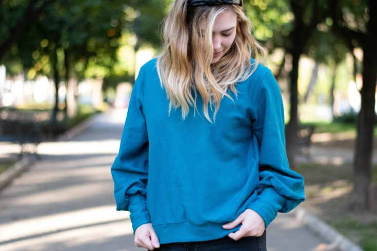 sewing the I Am Zebra sweatshirt with Minerva