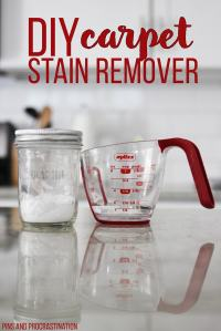 Homemade Carpet Stain Remover - Pins and Procrastination