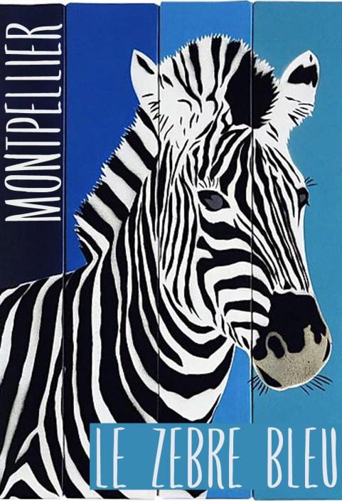 zebre-bleu