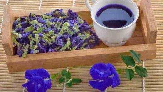 Cara Membuat Teh Bunga Telang