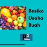 resiko usaha buah