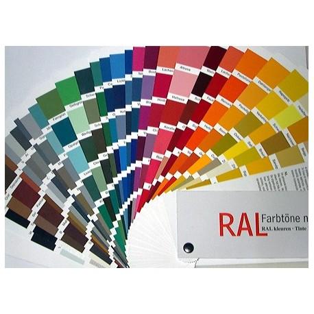 Carta de color RAL  Pintar Sin Parar  Superstore del color