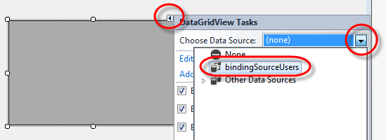 Visual Studio DataGridview select binding data source