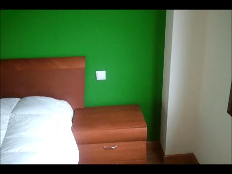 plastico verde y beige (6)
