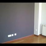 Pintura Plastica Color Gris Claro y Gris Oscuro 7