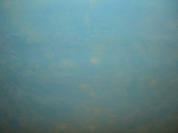 Estuco Veneciano Azul Wc 3