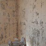 Aceite de linaza en techos y paredes (3)