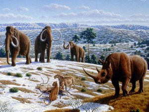 Ice_age_fauna_of_northern_Spain_-_Mauricio_Antón -- cropped