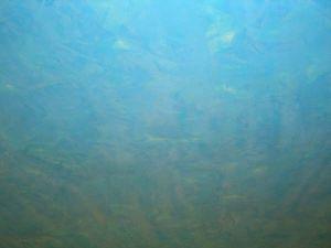 Estuco Veneciano Color Azul baño 4