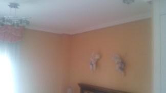 Plastico Liso Sideral con Veloglas color marron (17)