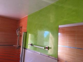 Estuco Mineral Blanco y Estuco Veneciano Verde en Wc (6)