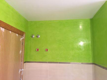 Estuco Mineral Blanco y Estuco Veneciano Verde en Wc (7)