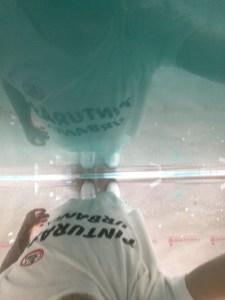 Estuco Veneciano Turquesa con 1ª mano de cera Alex (15)