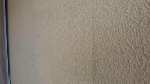 Gotele plastificado grueso en pasillo (1)