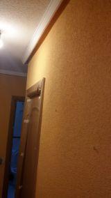 Gotele plastificado grueso en pasillo (2)