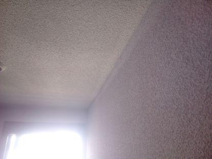 Gotele al temple en techos y paredes (7)
