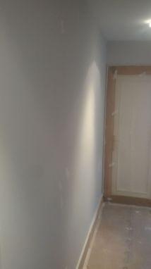 1 mano de plastico sideral s-500 y replastecido de paredes (23)