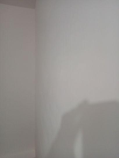 3 mano de aguaplas acabados en techos y paredes (6)