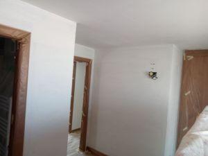 Aplicado 1ª Mano de Aguaplast Macyplast en techos y paredes (24)