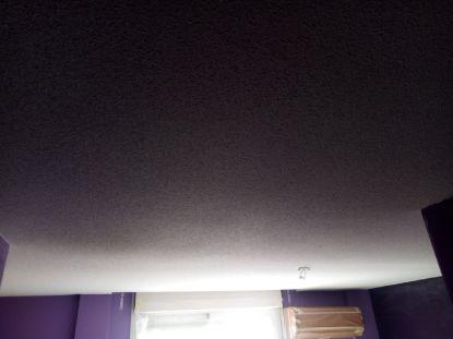Estado Gotele en techos y paredes piso Pinto (24)