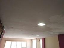 Estado techos Salon y entrada (9)
